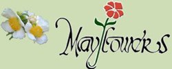 MayFlowers Nursery